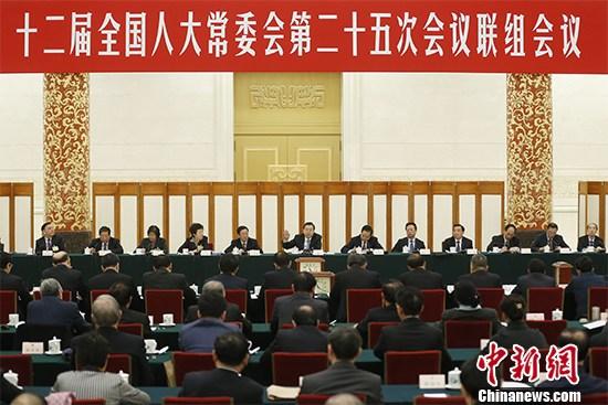 十二届全国人大常委会第二十五次会议举行联组会议