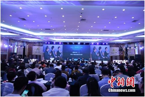 中国新型城镇化发展论坛举行发展特色小镇