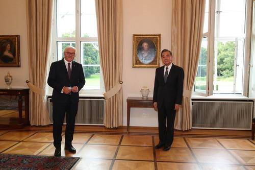 德国总统施泰因迈尔会见王毅