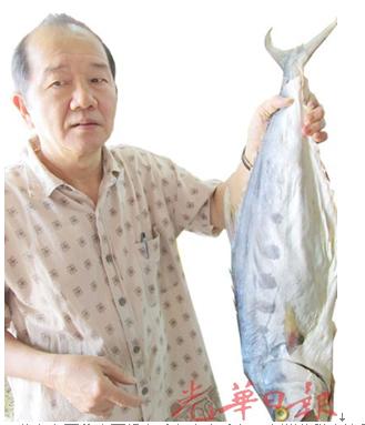 马来西亚咸鱼街腥味减华裔硕士卖咸鱼成回忆