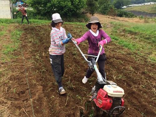 在日华人将田园融入生活每逢假日垦荒种菜