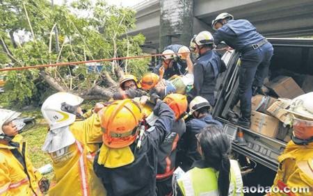 新加坡一华裔司机高速路上失控撞树致2人受伤