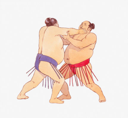 日本相扑史上曾经有一个体重达到263公斤的大关