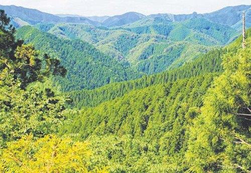 日本和歌山山光水色