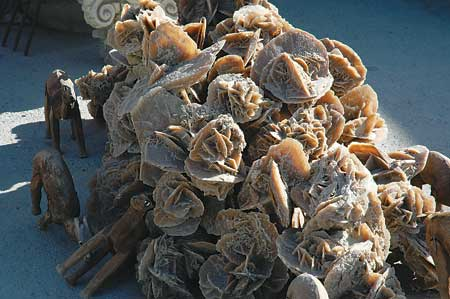 沙漠玫瑰图片_植物盆景沙漠白玫瑰,obesum.沙漠玫瑰