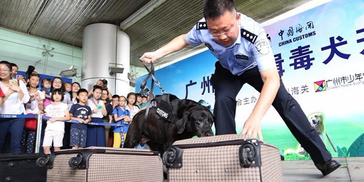 广州海关携缉毒犬给小朋友上课