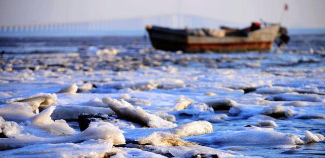 胶州湾海冰再起 厚度超过十厘米