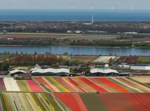 荷兰景区人满为患 当局拟开辟新景区分流游客