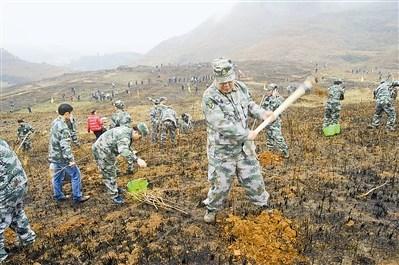 贵州玉屏近2000民兵开展大规模植树造林