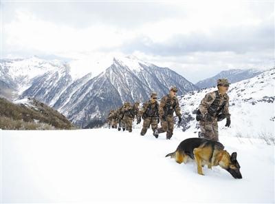 云南边防官兵零下10多度爬雪山打击走私盗猎(图)