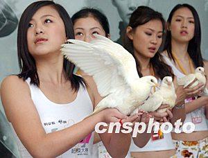 模特手捧和平鸽祈盼世界和平