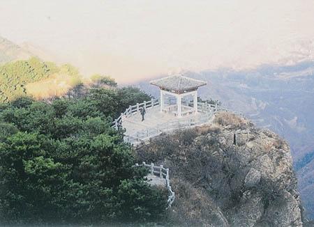 图:济南跑马岭野生动物世界