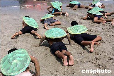 动物保护组织扮海龟在海滩爬行