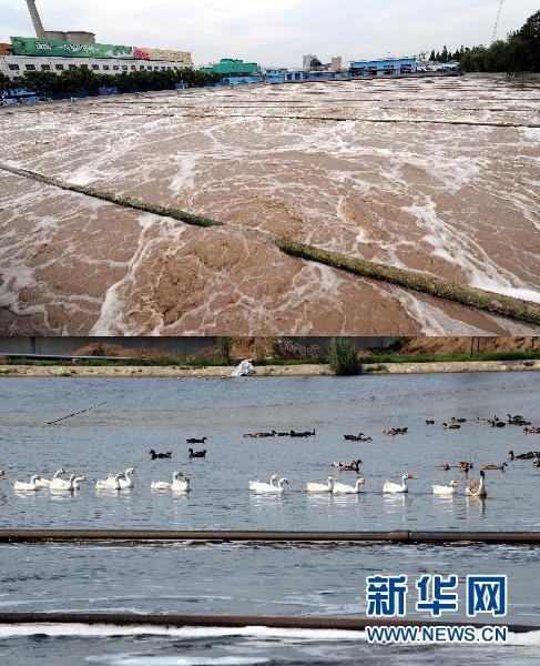 山东水生态大逆转 59条省控污染河流条条有鱼