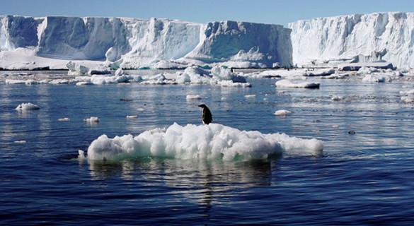南极气温创新低 出现100次零下98度情况