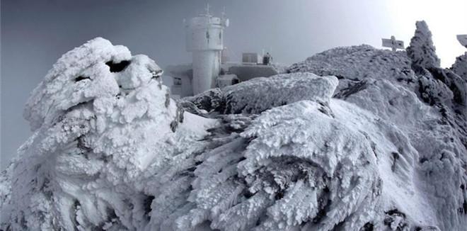 美国华盛顿山现雾凇奇景 冰霜覆盖仿佛童话世界