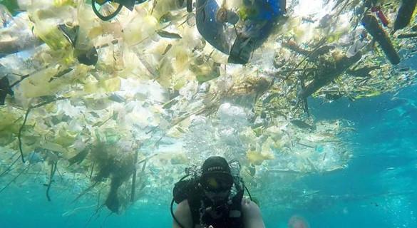 入侵雨滴和北极冰芯、杀死儒艮:塑料污染触目惊心