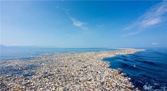"""研究称海洋无氧""""死区""""面积增三倍 后果严重"""