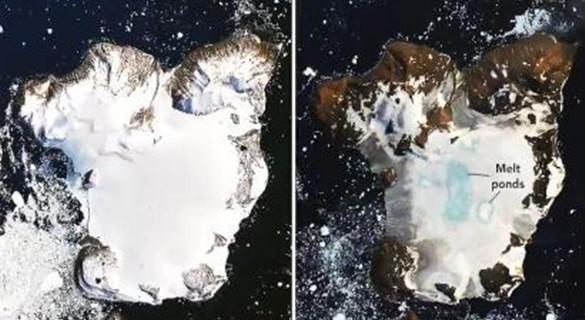 持zhong)天熱(re)浪侵(qin)襲 南極洲東北(bei)端鷹島約20%積雪融化(hua)