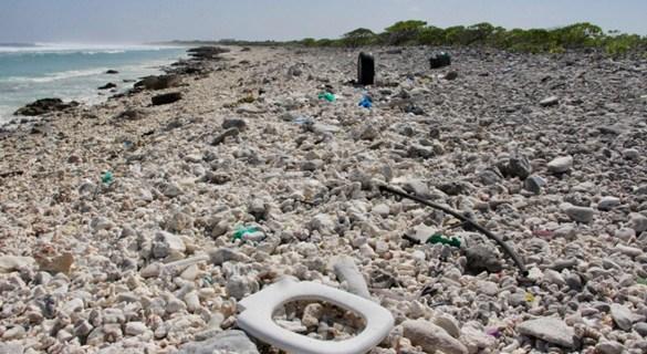 严重威胁人类食物链 太平洋垃圾面积大于法德西总和