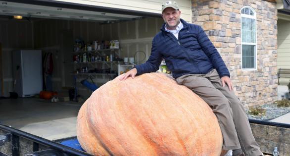 """我的南瓜重1491磅!美怀州""""南瓜狂徒""""刷地区纪录"""