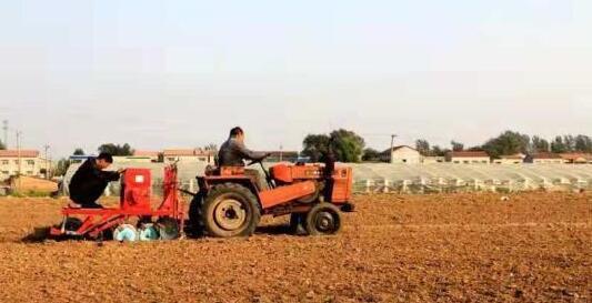 河南延津:百万亩优质小麦助力农民脱贫致富