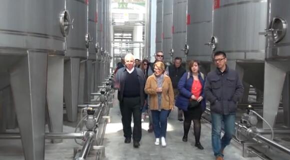 媒体点赞张裕葡萄酒城
