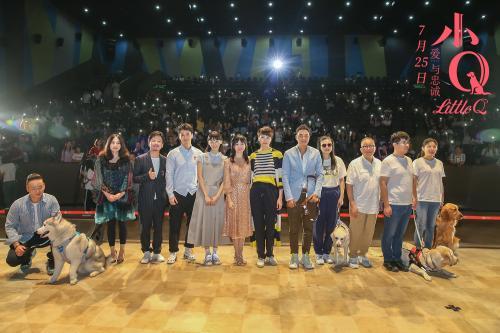 电影《小Q》催泪 导演:导盲犬为世界带来温暖感动