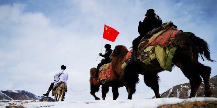 零下20℃海拔4300米送防疫物资 他们怎么做到的