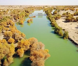新疆塔里木河生态输水场面壮观