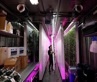 纽约科技范集装箱农场 通过光控种植蔬菜