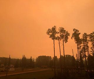 加拿大山林大火难控浓烟弥漫天空变橙色