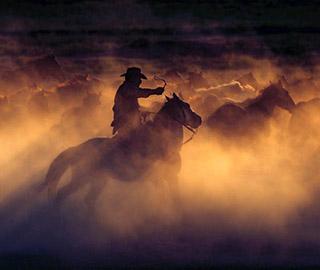 震撼!土耳其牧马人策马奔腾画面绝美