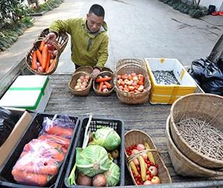 探访武汉动物园食堂 一天吃掉1吨食材