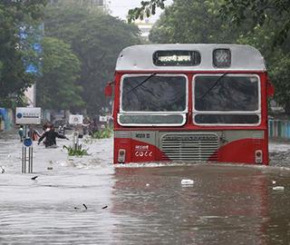 【图刊】洪水中的奇特景象