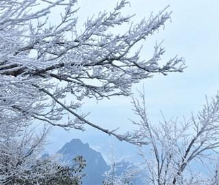 张家界天门山迎今冬首场雾凇