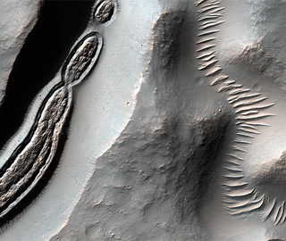 NASA公布火星怪诞照