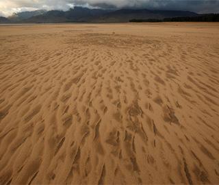 南非宣布干旱进入国家灾难状态