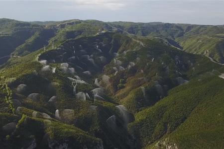 美丽中国:绿色发展 生态优先