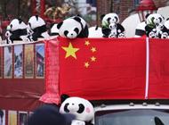 鼠年华埠春节大游行