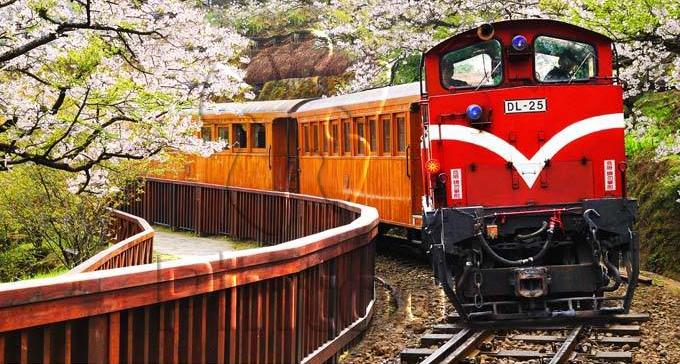 事故频发多次出轨 阿里山森林铁路暂停驶