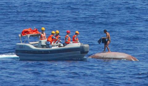 """9月29日,第21号强台风""""蝴蝶""""正面袭击西沙群岛,造成数十艘渔船搁浅"""