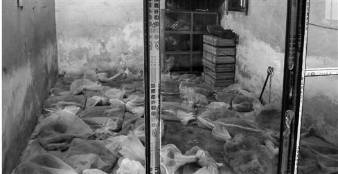 30多袋蛇堆放金华闹市老房子 屡闯民宅惹恐慌(图)