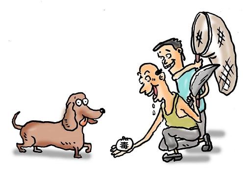 万余斤毒狗肉流入市场 江苏特大制售有毒有害食品案宣判