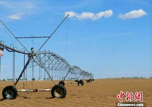 """通讯:中国西北农民出国""""求学""""记"""