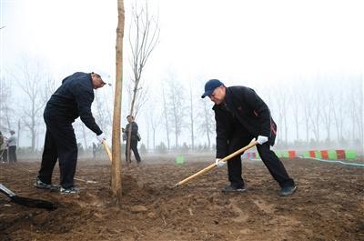 162名部级领导义务植树揭秘部长植树如何选址?