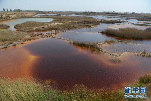 河北大城县渗坑治理方案公布9月20日完成固废治理