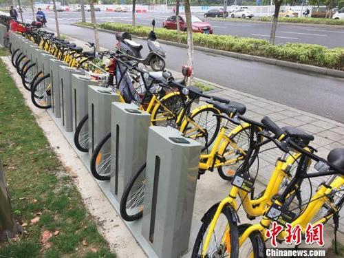 共享单车暴露骑行空间困境 部分城市无专用自行车道