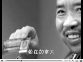 董文华红楼事件视频_
