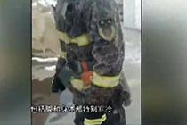 消防员零下三十度灭火